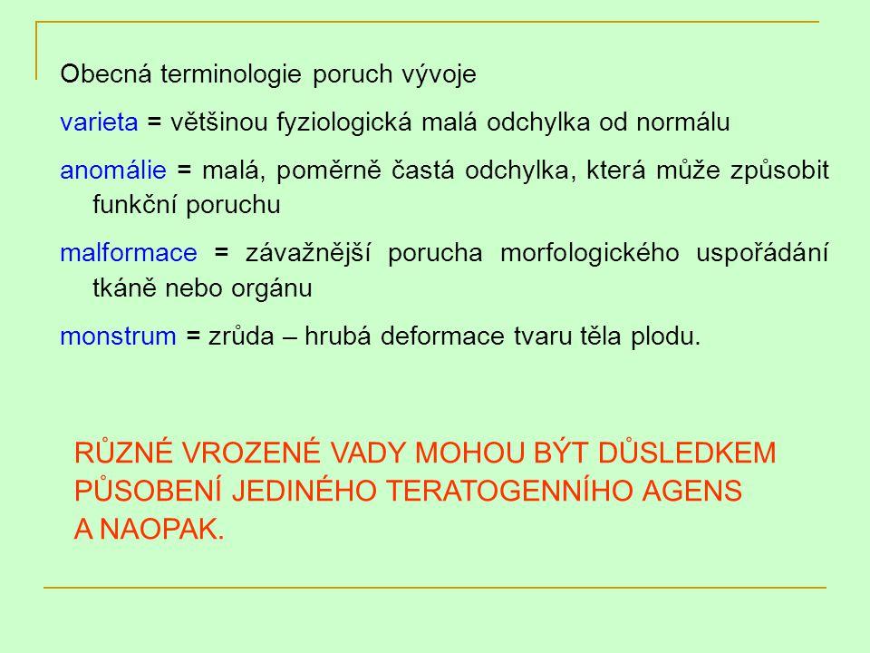 Obecná terminologie poruch vývoje