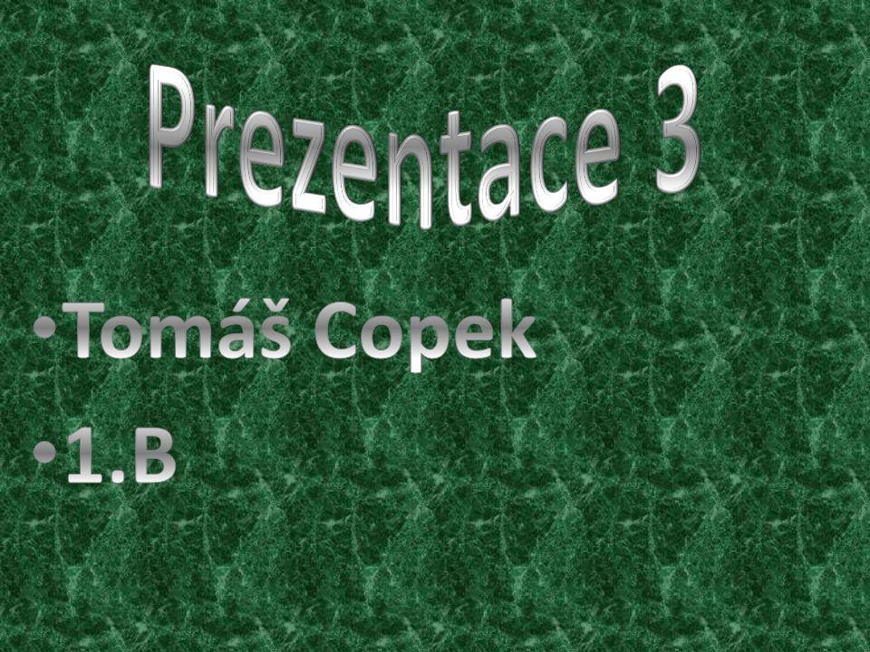 Prezentace 3 Tomáš Copek 1.B