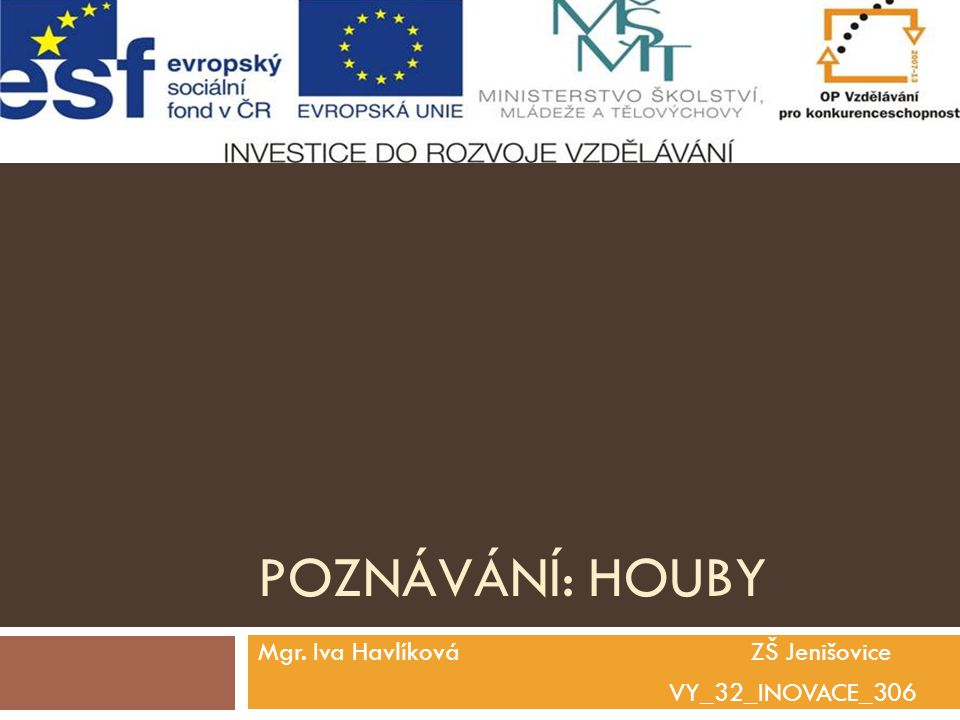 Mgr. Iva Havlíková ZŠ Jenišovice VY_32_INOVACE_306