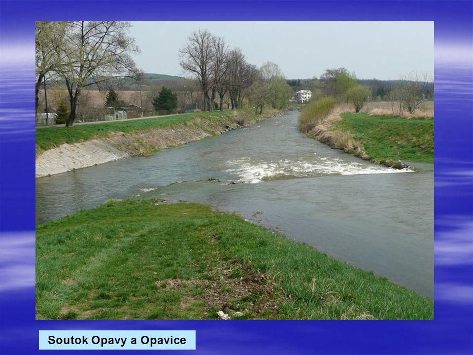 Soutok Opavy a Opavice