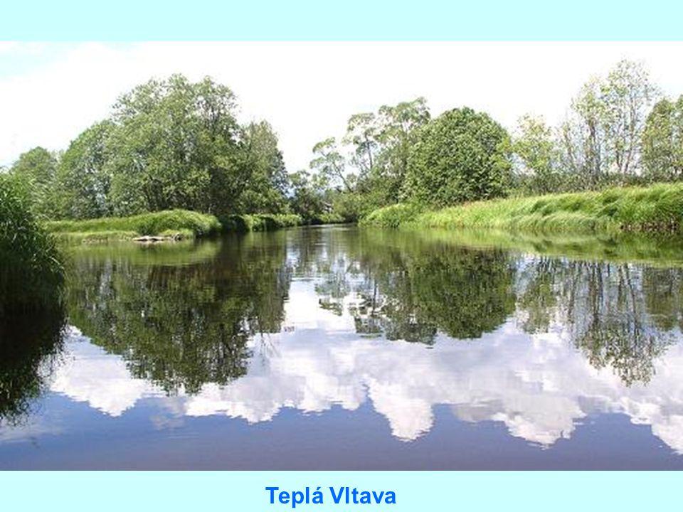 Naše nejdelší a nejvodnatější řeka se jmenuje Vltava až od soutoku Teplé a Studené Vltavy v přírodní rezervaci Mrtvý luh nedaleko začátku vzdutí Lipna. Za hlavní pramennou větev se považuje delší Teplá Vltava, která pramení na východním svahu Černé hory (1 315 m) na Šumavě ve výšce 1 172 m nad mořem pod jménem Černý potok (přesto se o jeho prameni mluví jako o chráněném území Prameny Vltavy). Název Teplá Vltava nese potok až od Borových Lad, kde se stéká s tzv. Malou Vltavou známou i pod názvem Vltavský potok. Ten pramení v Pláňském polesí ve výšce 1 158 m nad mořem. U Lenory přibírá Teplá Vltava zprava ještě vody Travnaté Vltavy (zvané také Řasnice).