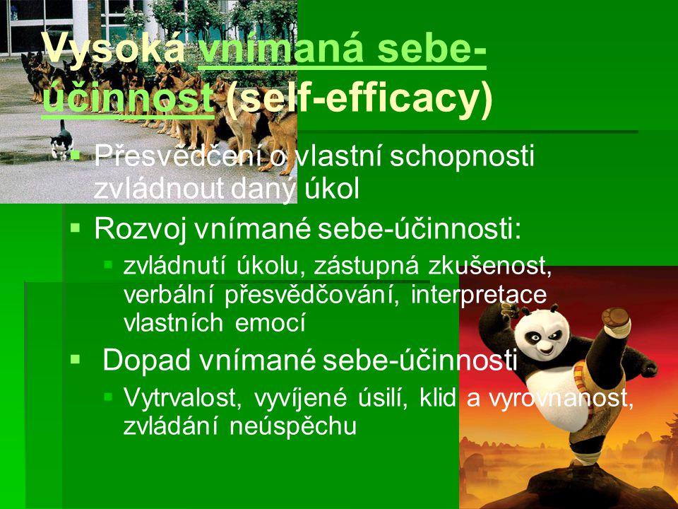 Vysoká vnímaná sebe-účinnost (self-efficacy)