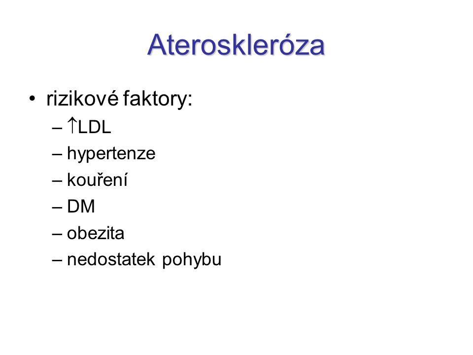 Ateroskleróza rizikové faktory: LDL hypertenze kouření DM obezita