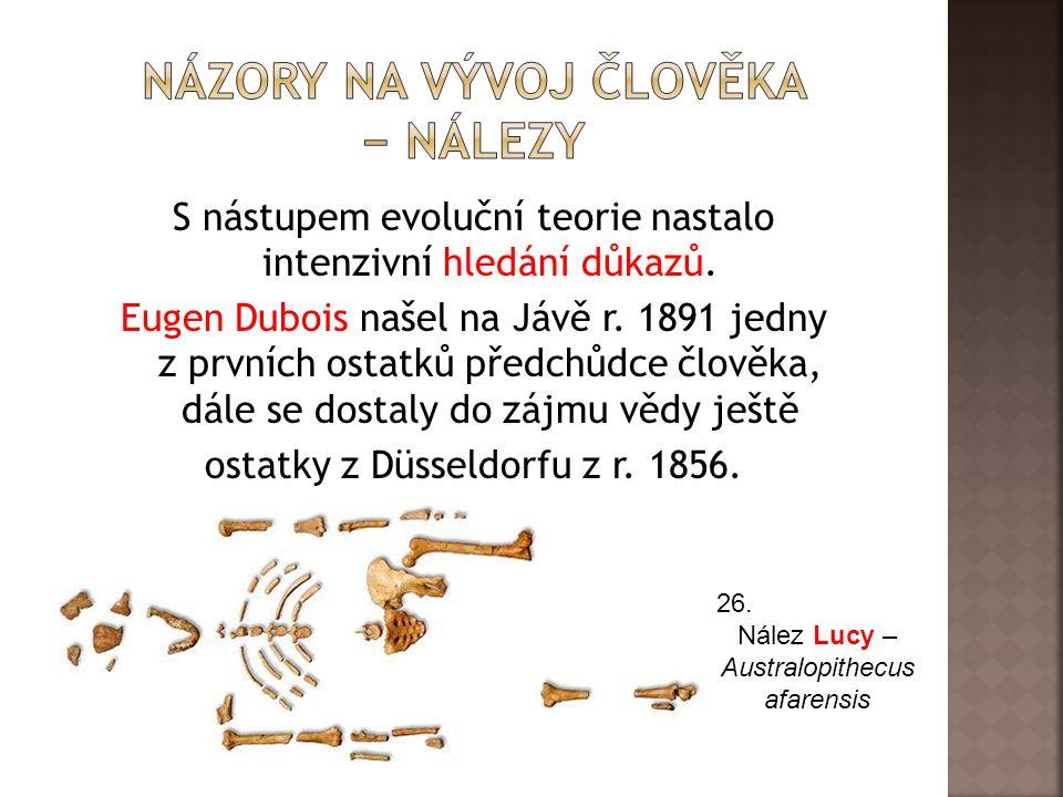 Názory na vývoj člověka − nálezy