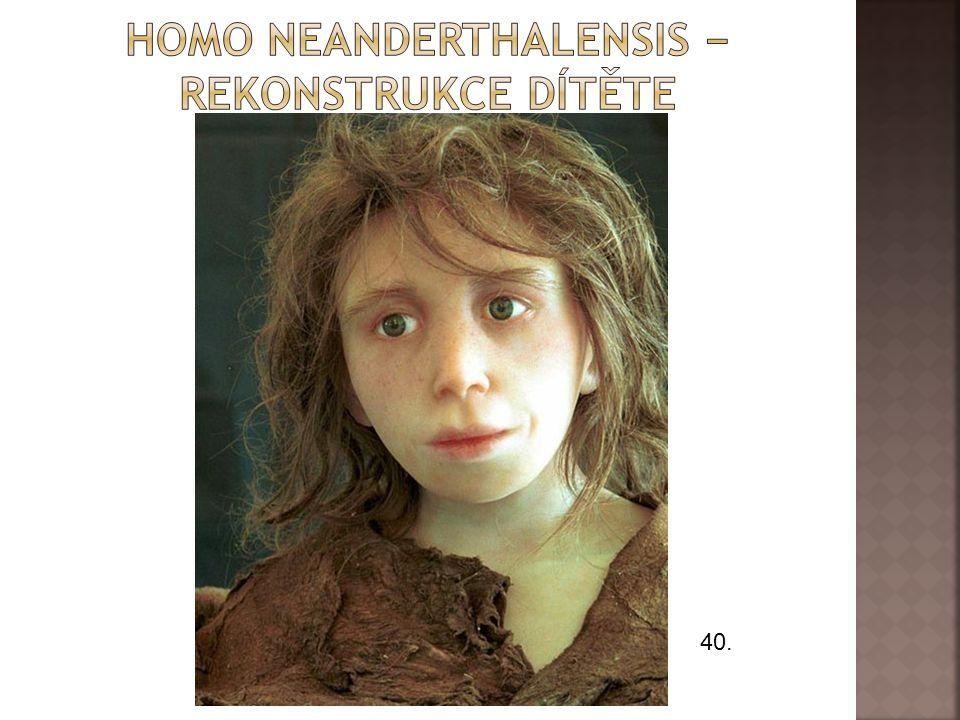 Homo neanderthalensis − rekonstrukce dítěte