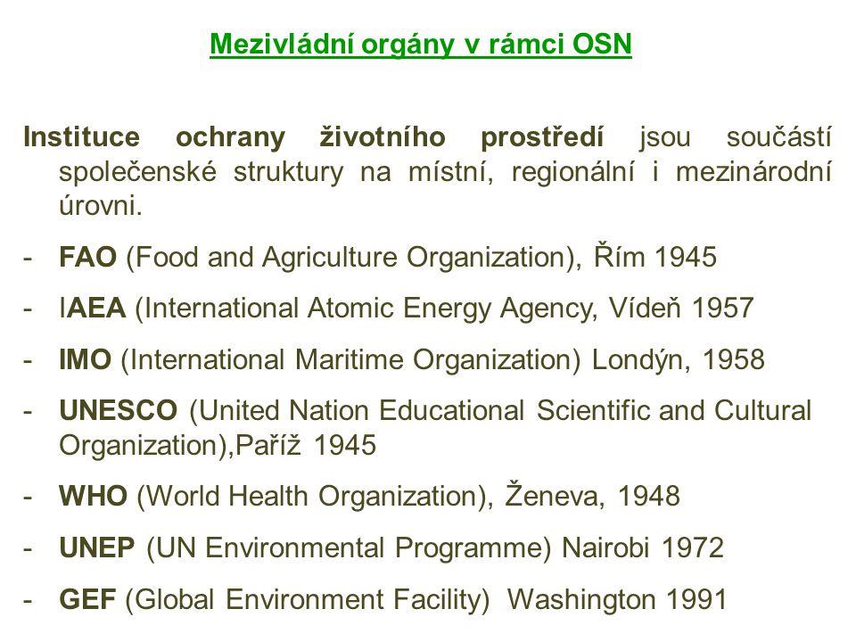 Mezivládní orgány v rámci OSN