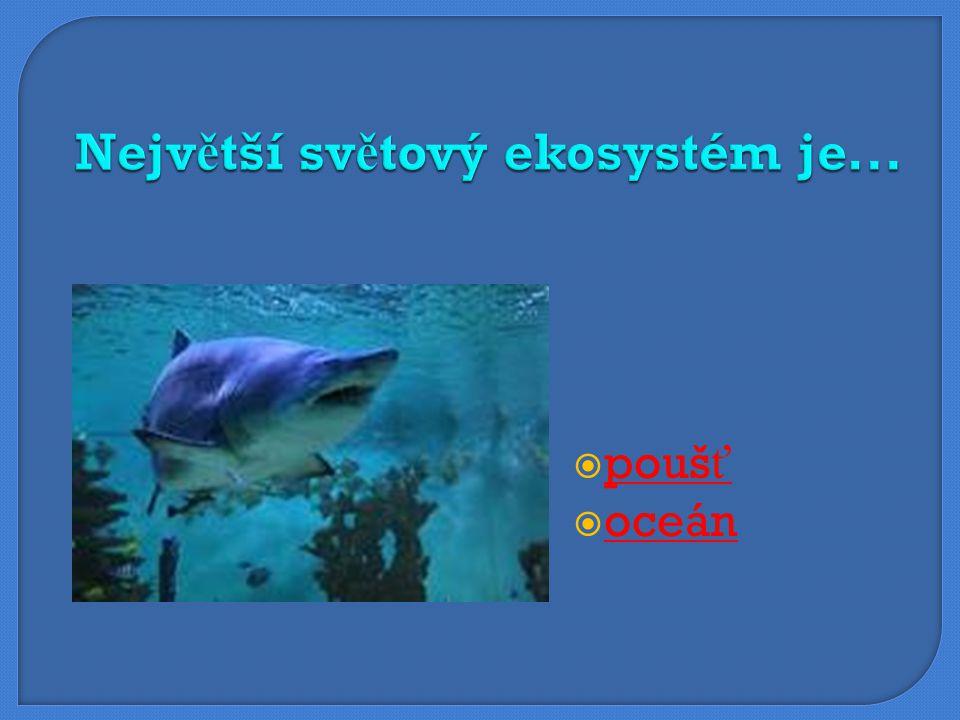 Největší světový ekosystém je...
