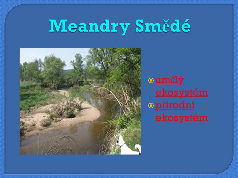 Meandry Smědé umělý ekosystém přírodní ekosystém