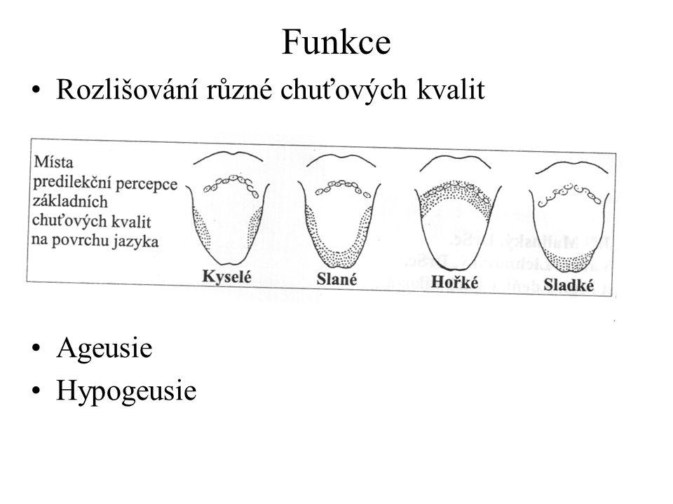 Funkce Rozlišování různé chuťových kvalit Ageusie Hypogeusie
