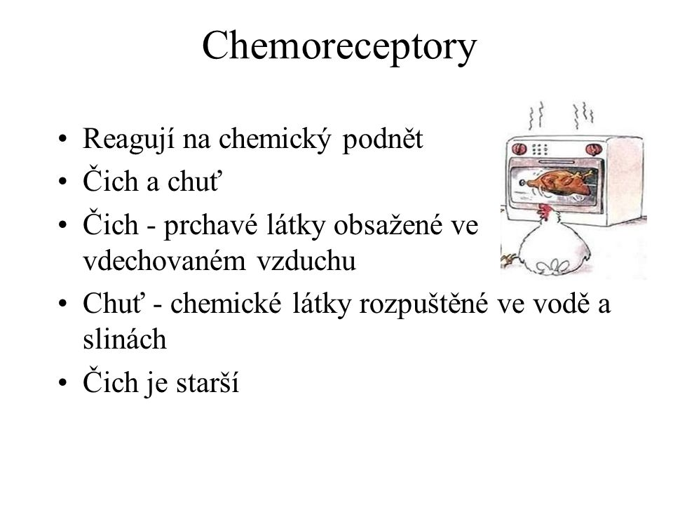 Chemoreceptory Reagují na chemický podnět Čich a chuť