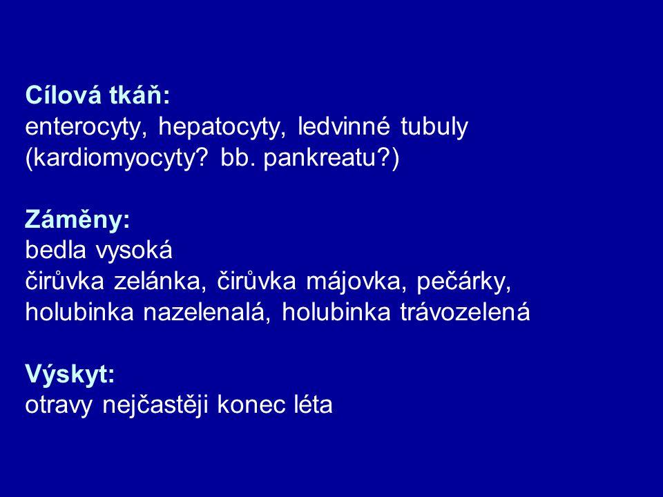 Cílová tkáň: enterocyty, hepatocyty, ledvinné tubuly. (kardiomyocyty bb. pankreatu ) Záměny: bedla vysoká.