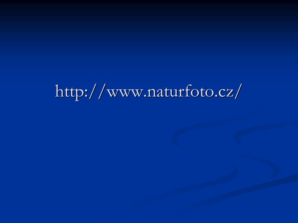 http://www.naturfoto.cz/