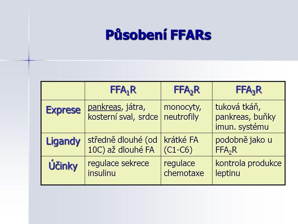 Působení FFARs FFA1R FFA2R FFA3R Exprese Ligandy Účinky