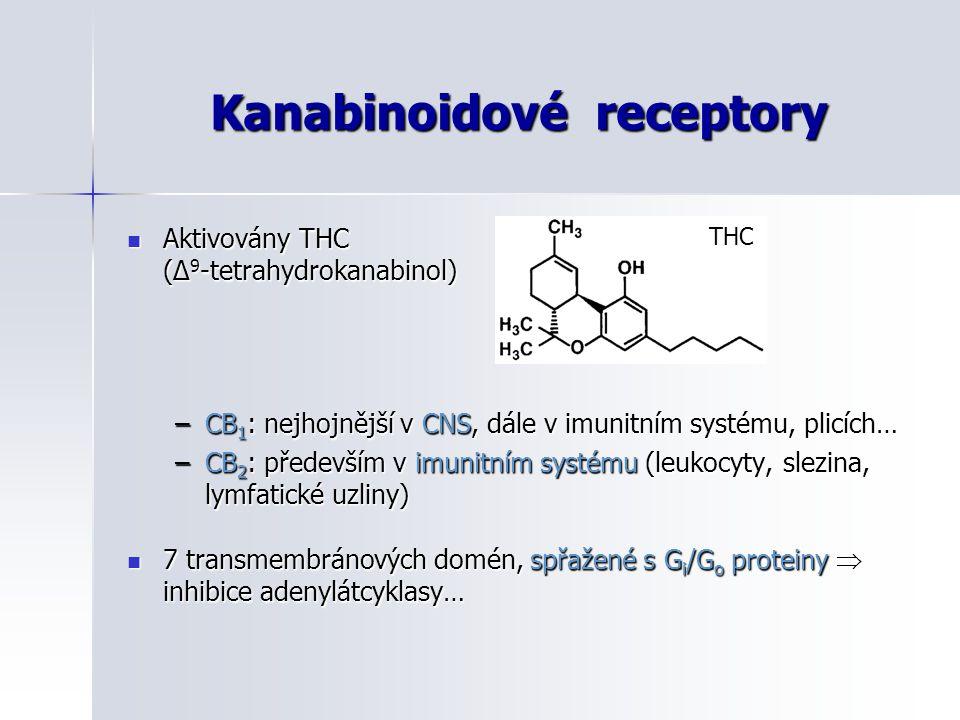 Kanabinoidové receptory