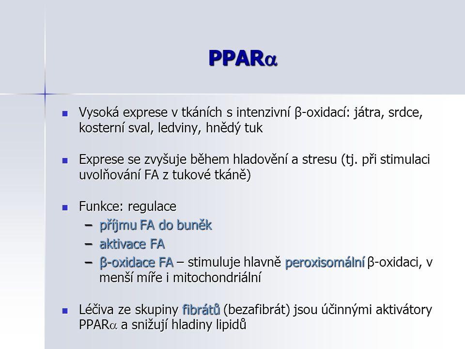 PPAR Vysoká exprese v tkáních s intenzivní β-oxidací: játra, srdce, kosterní sval, ledviny, hnědý tuk.