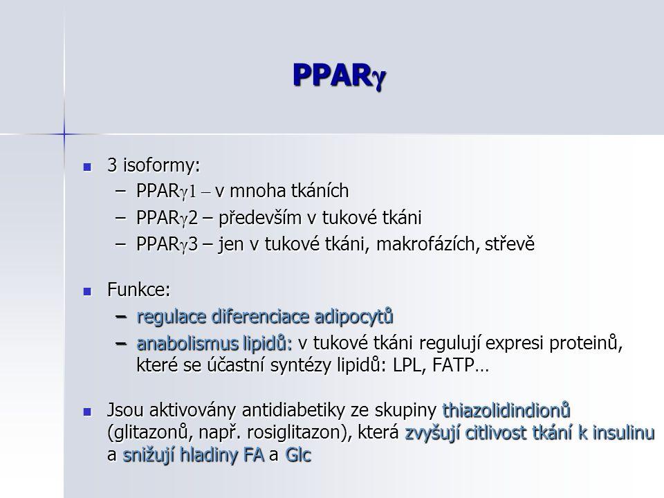 PPARγ 3 isoformy: PPARγ1 – v mnoha tkáních