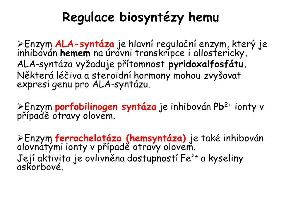 Regulace biosyntézy hemu