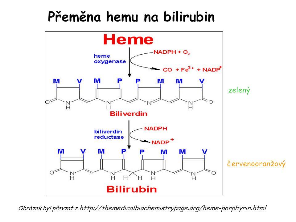 Přeměna hemu na bilirubin