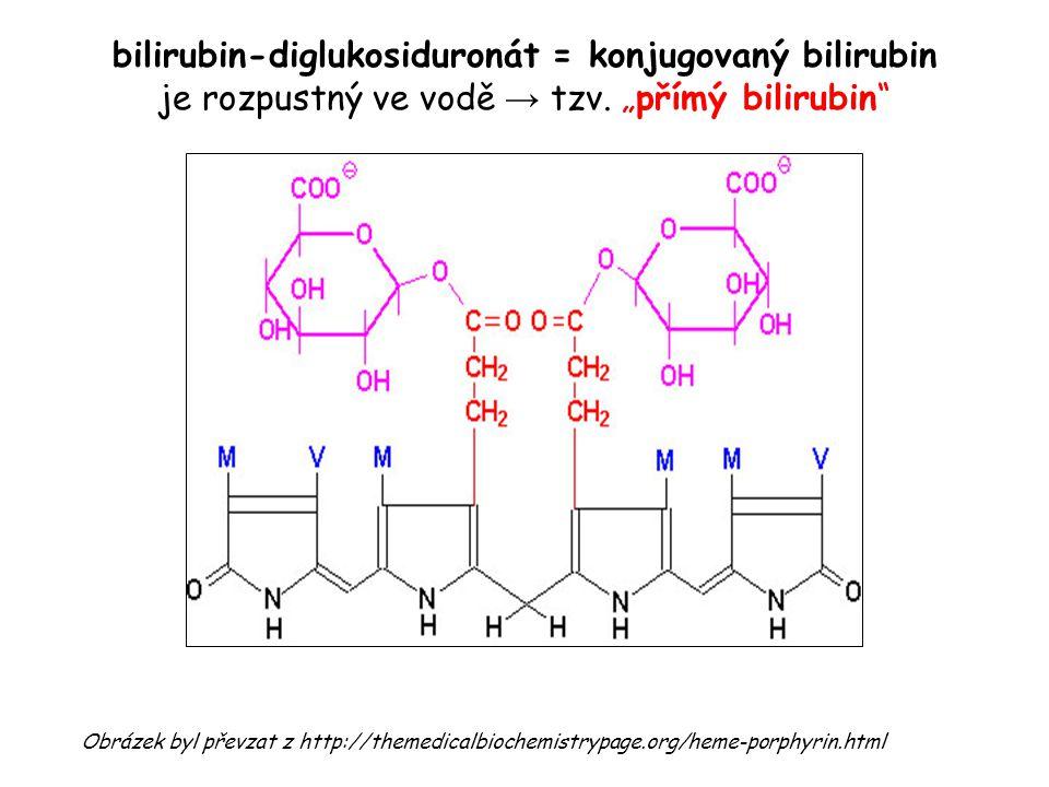 """bilirubin-diglukosiduronát = konjugovaný bilirubin je rozpustný ve vodě → tzv. """"přímý bilirubin"""