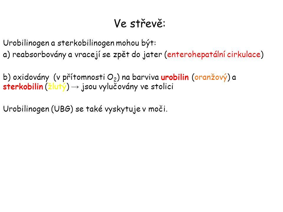 Ve střevě: Urobilinogen a sterkobilinogen mohou být: