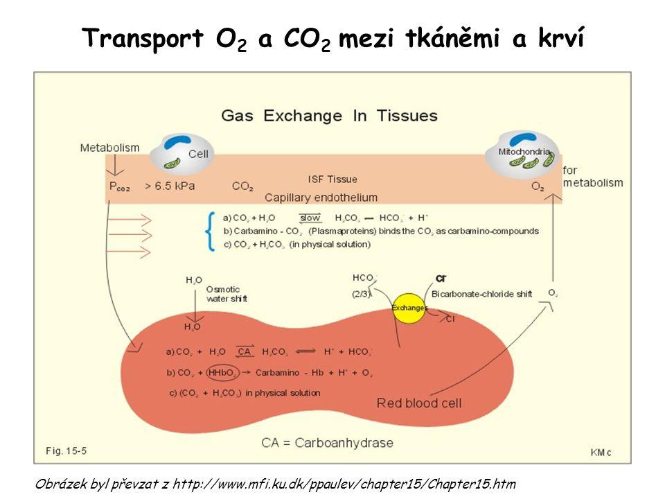 Transport O2 a CO2 mezi tkáněmi a krví