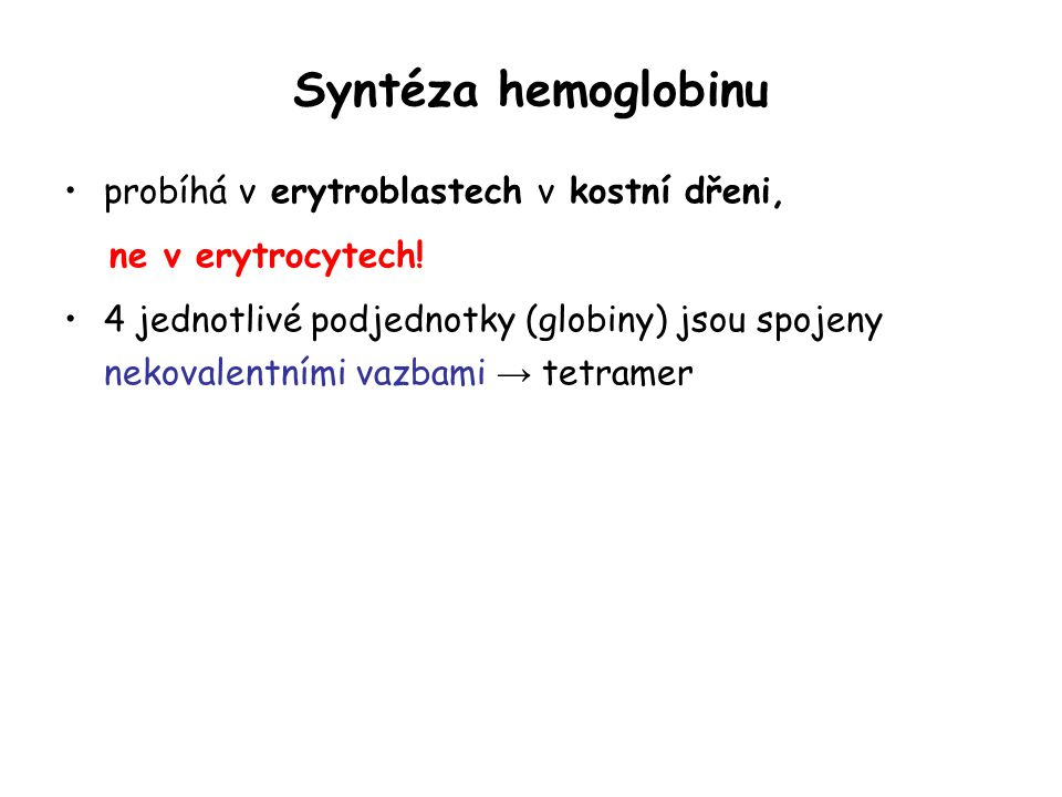 Syntéza hemoglobinu probíhá v erytroblastech v kostní dřeni,