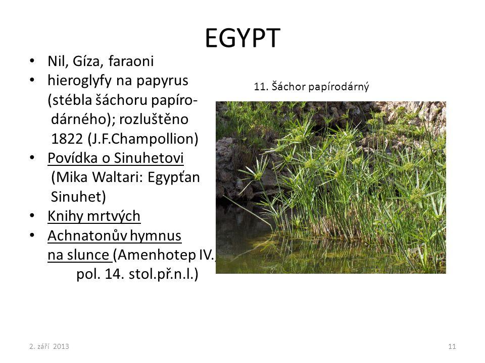 EGYPT Nil, Gíza, faraoni hieroglyfy na papyrus (stébla šáchoru papíro-