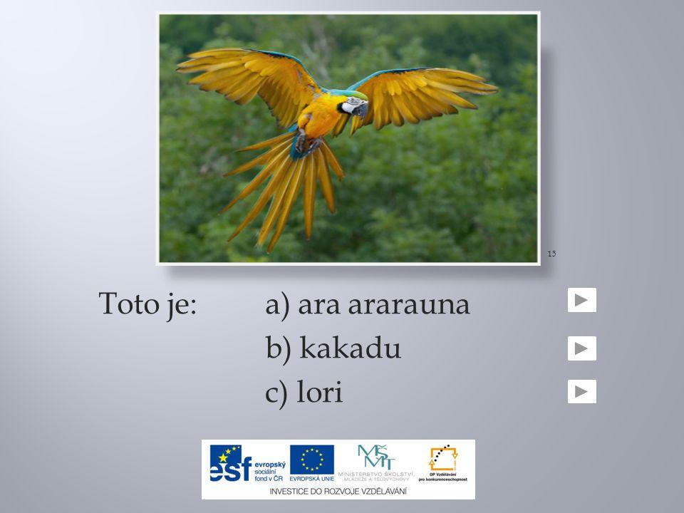 Toto je: a) ara ararauna