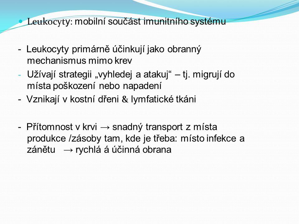 Leukocyty: mobilní součást imunitního systému