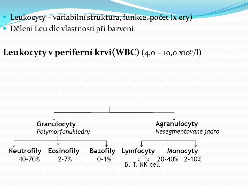 Leukocyty v periferní krvi(WBC) (4,0 – 10,0 x109/l)