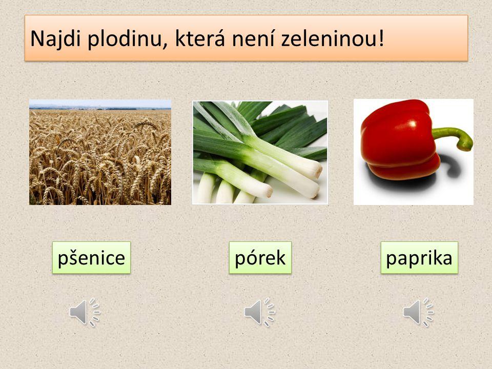 Najdi plodinu, která není zeleninou!