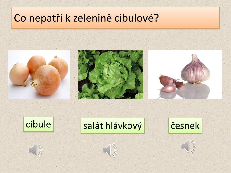 Co nepatří k zelenině cibulové