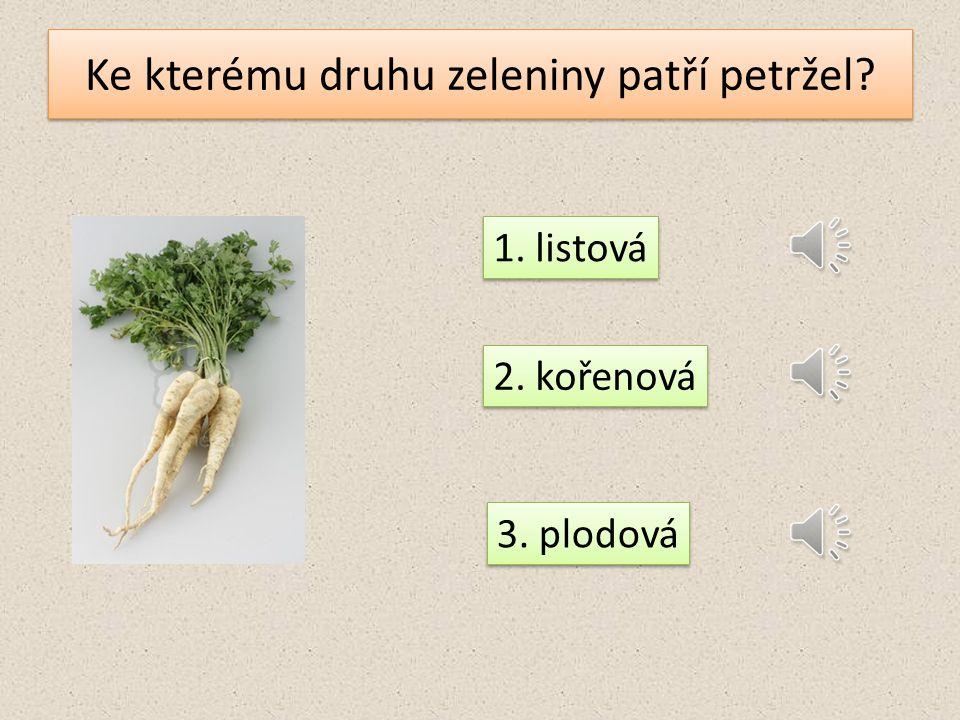 Ke kterému druhu zeleniny patří petržel