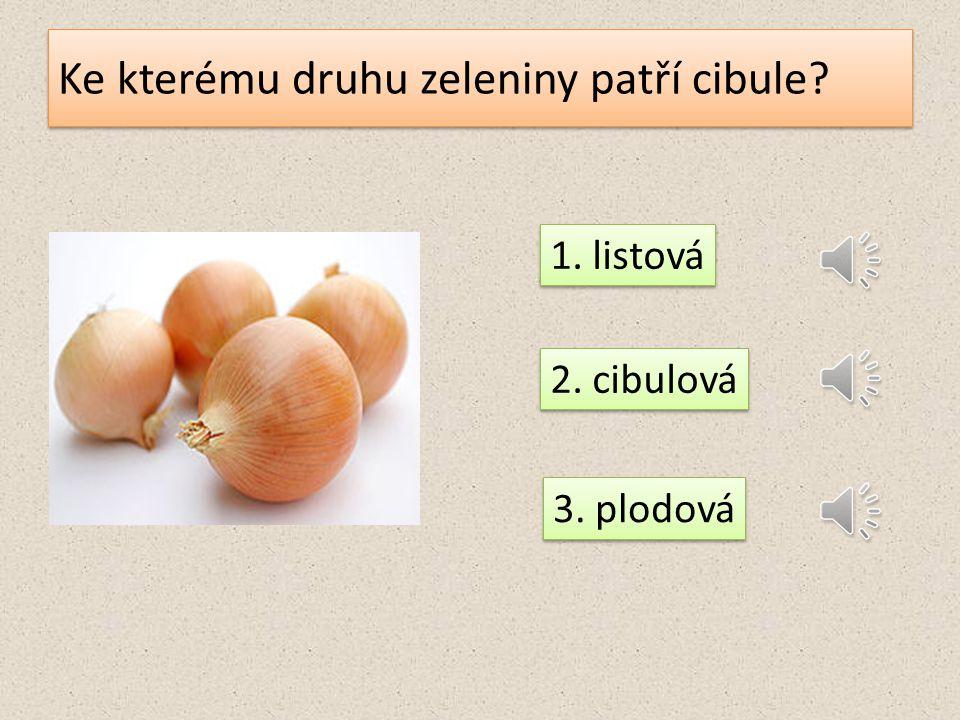 Ke kterému druhu zeleniny patří cibule