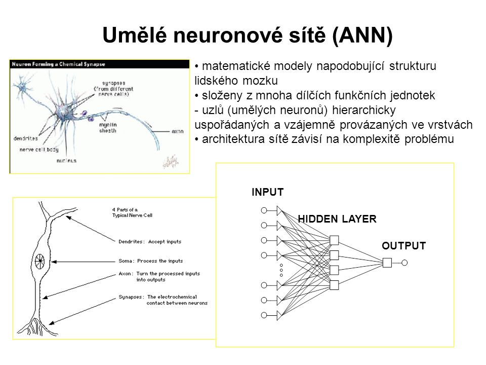 Umělé neuronové sítě (ANN)