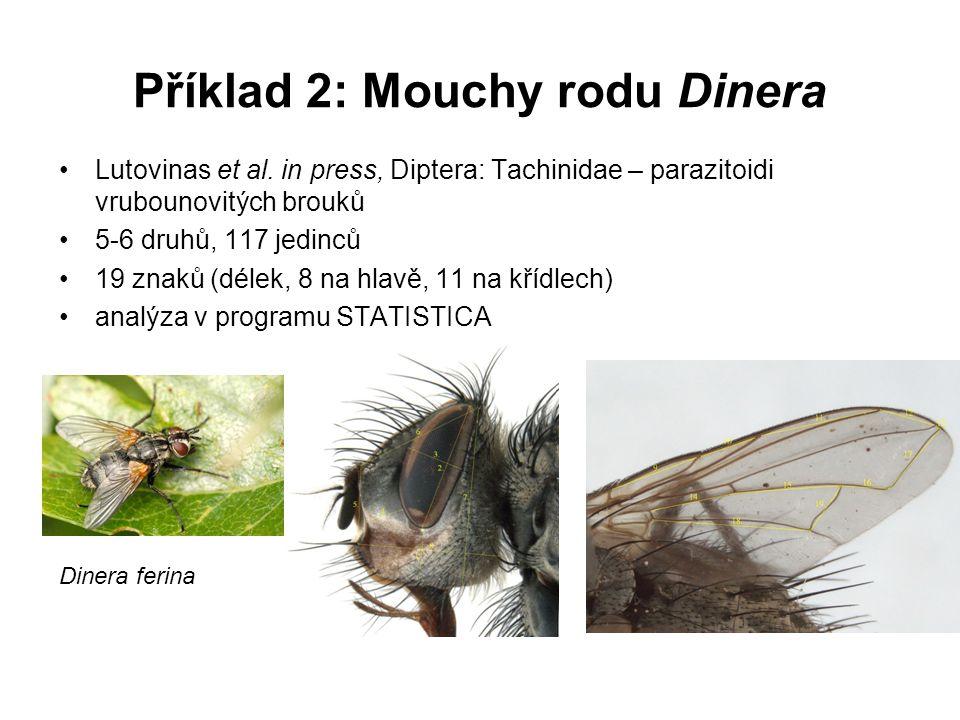 Příklad 2: Mouchy rodu Dinera