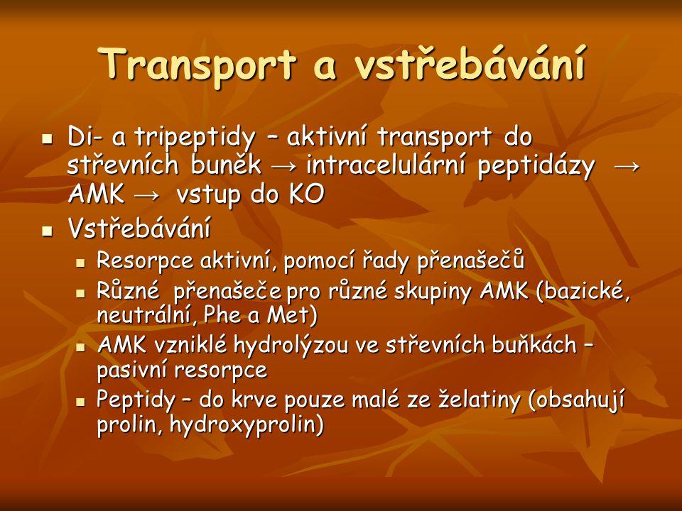 Transport a vstřebávání