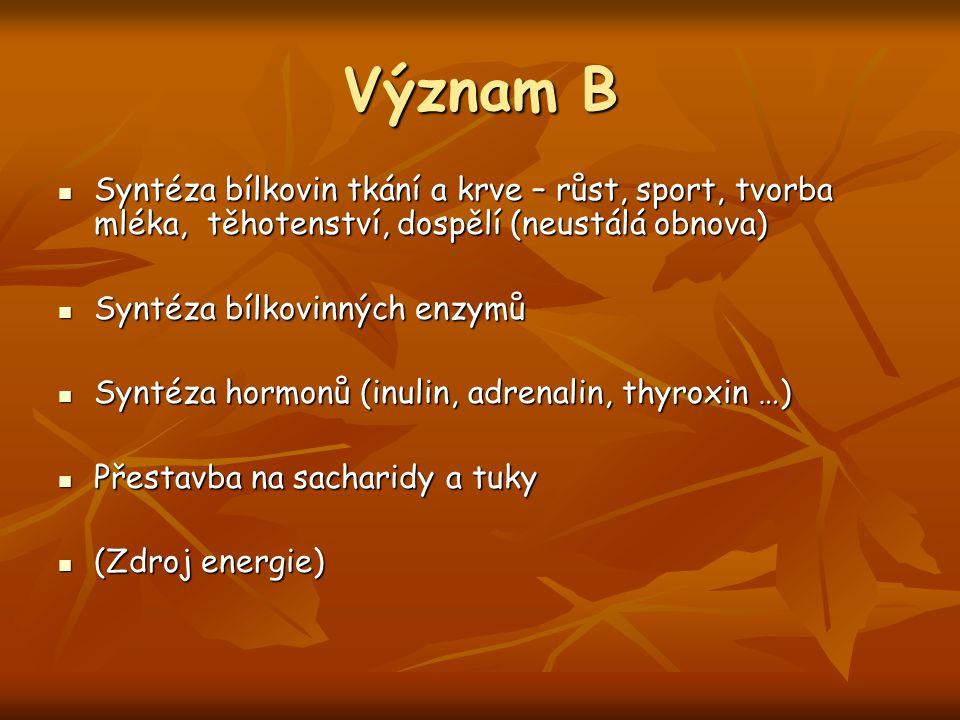 Význam B Syntéza bílkovin tkání a krve – růst, sport, tvorba mléka, těhotenství, dospělí (neustálá obnova)