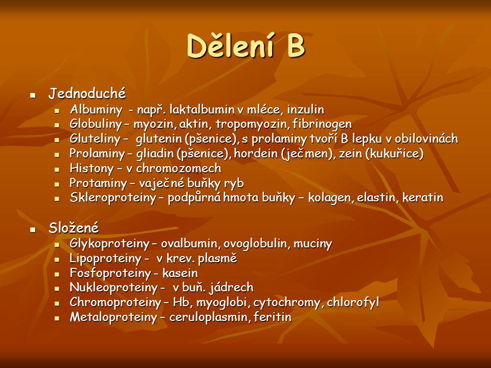 Dělení B Jednoduché Složené