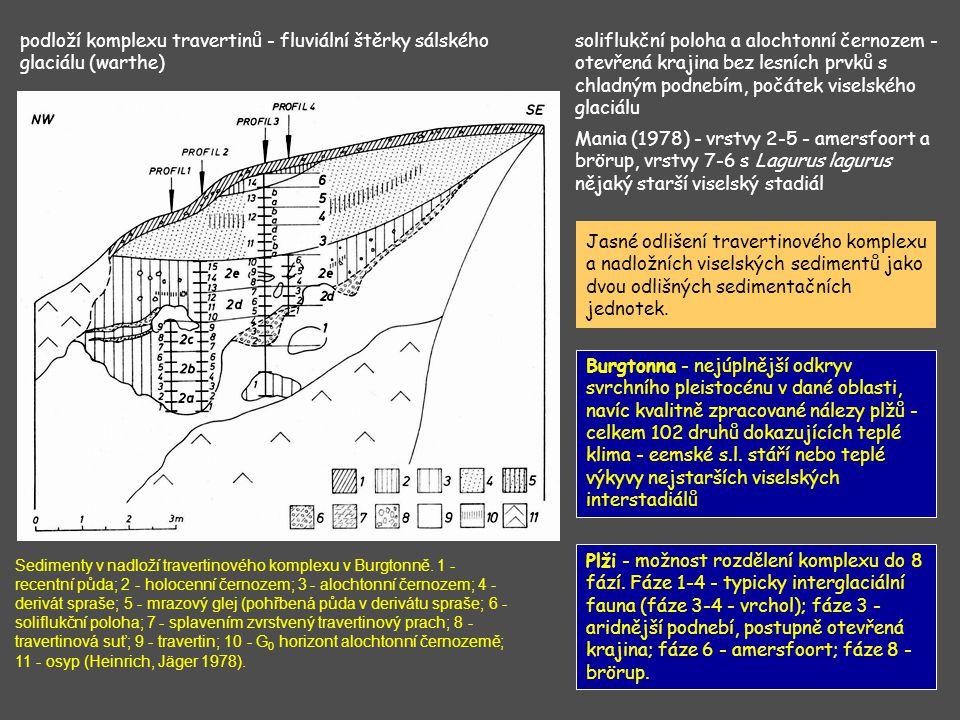 podloží komplexu travertinů - fluviální štěrky sálského glaciálu (warthe)