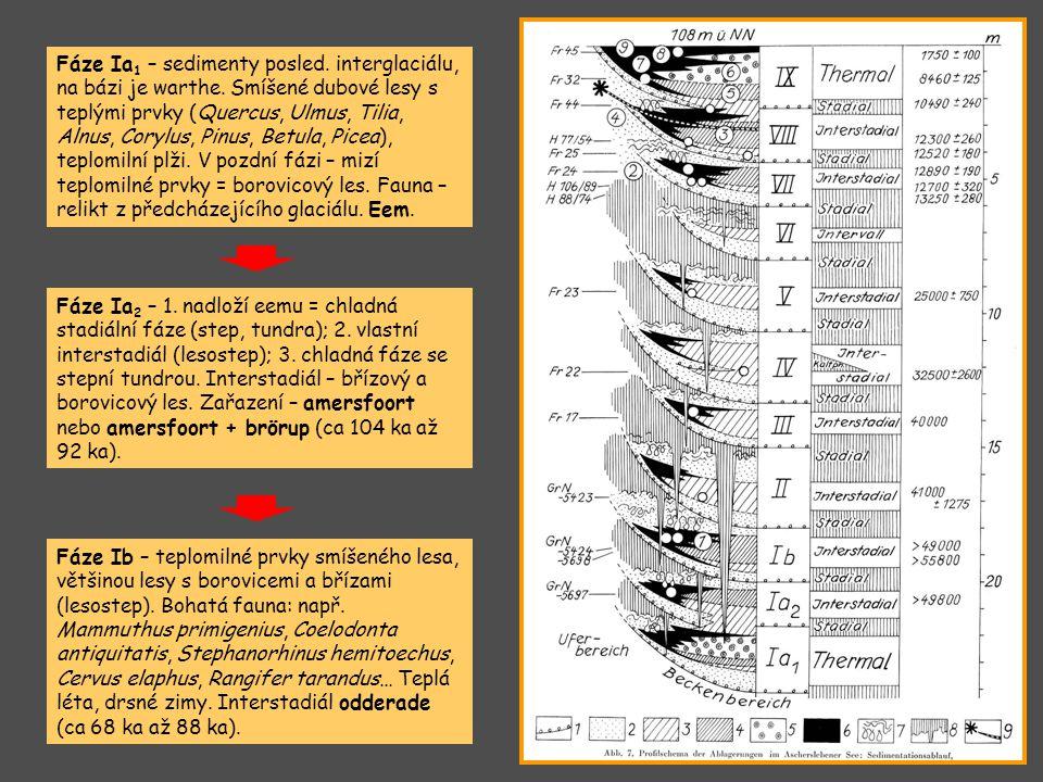Fáze Ia1 – sedimenty posled. interglaciálu, na bázi je warthe