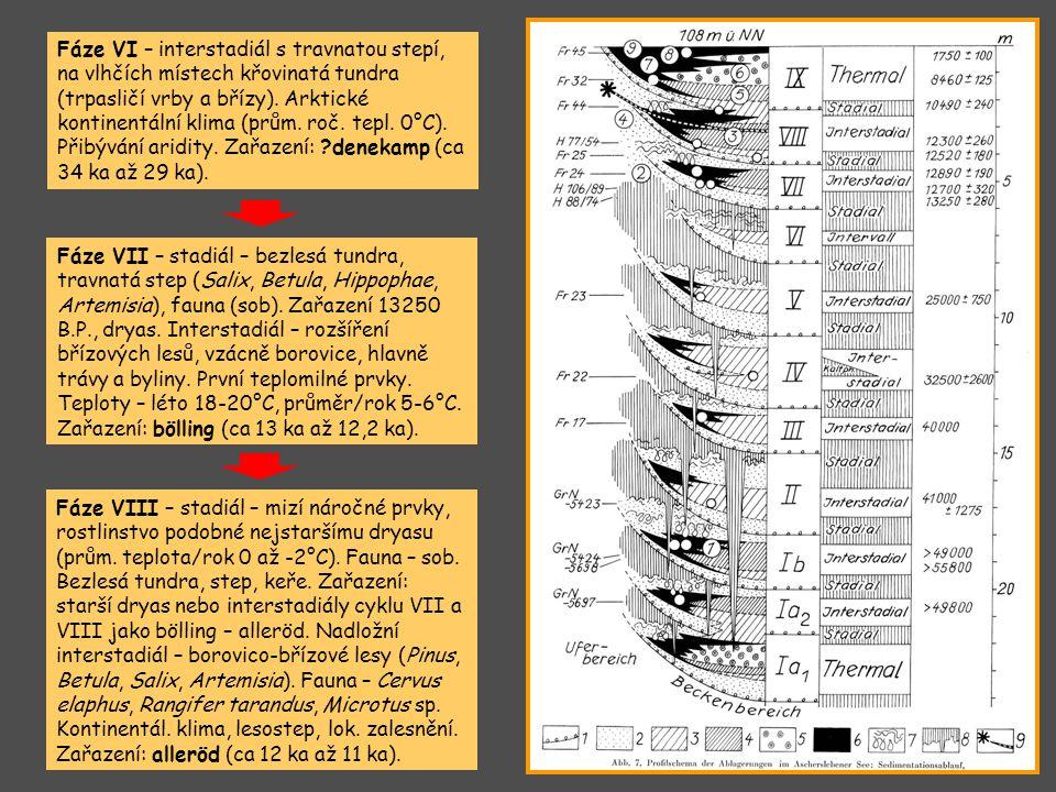 Fáze VI – interstadiál s travnatou stepí, na vlhčích místech křovinatá tundra (trpasličí vrby a břízy). Arktické kontinentální klima (prům. roč. tepl. 0°C). Přibývání aridity. Zařazení: denekamp (ca 34 ka až 29 ka).