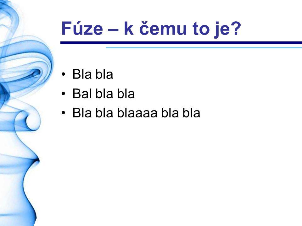 Fúze – k čemu to je Bla bla Bal bla bla Bla bla blaaaa bla bla