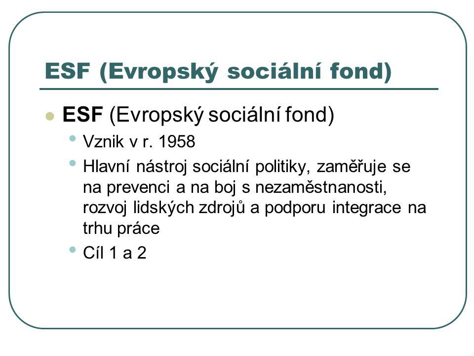 ESF (Evropský sociální fond)