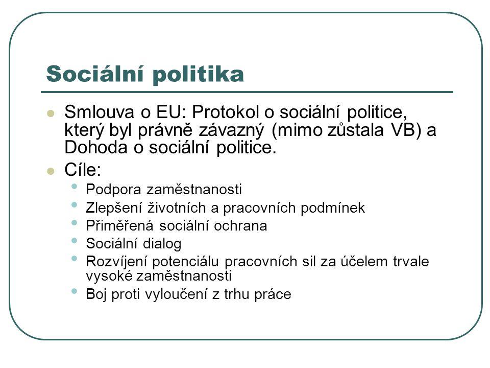 Sociální politika Smlouva o EU: Protokol o sociální politice, který byl právně závazný (mimo zůstala VB) a Dohoda o sociální politice.