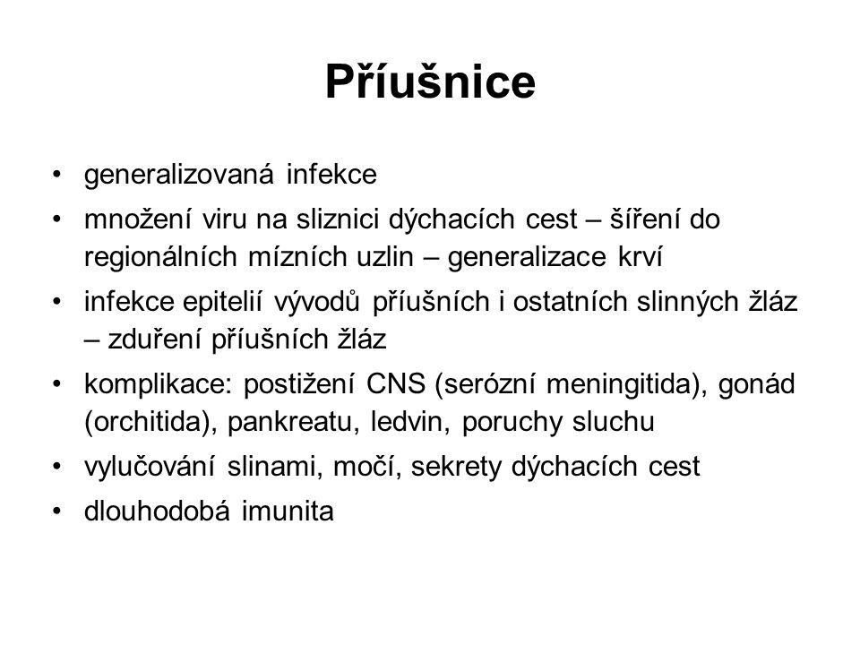 Příušnice generalizovaná infekce