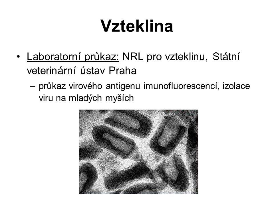 Vzteklina Laboratorní průkaz: NRL pro vzteklinu, Státní veterinární ústav Praha.