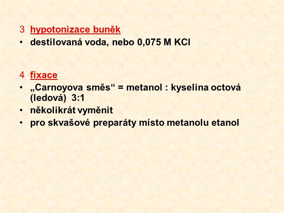 """hypotonizace buněk destilovaná voda, nebo 0,075 M KCl. fixace. """"Carnoyova směs = metanol : kyselina octová (ledová) 3:1."""