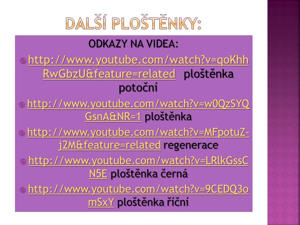 Další ploštěnky: ODKAZY NA VIDEA: http://www.youtube.com/watch v=qoKhh RwGbzU&feature=related ploštěnka potoční.