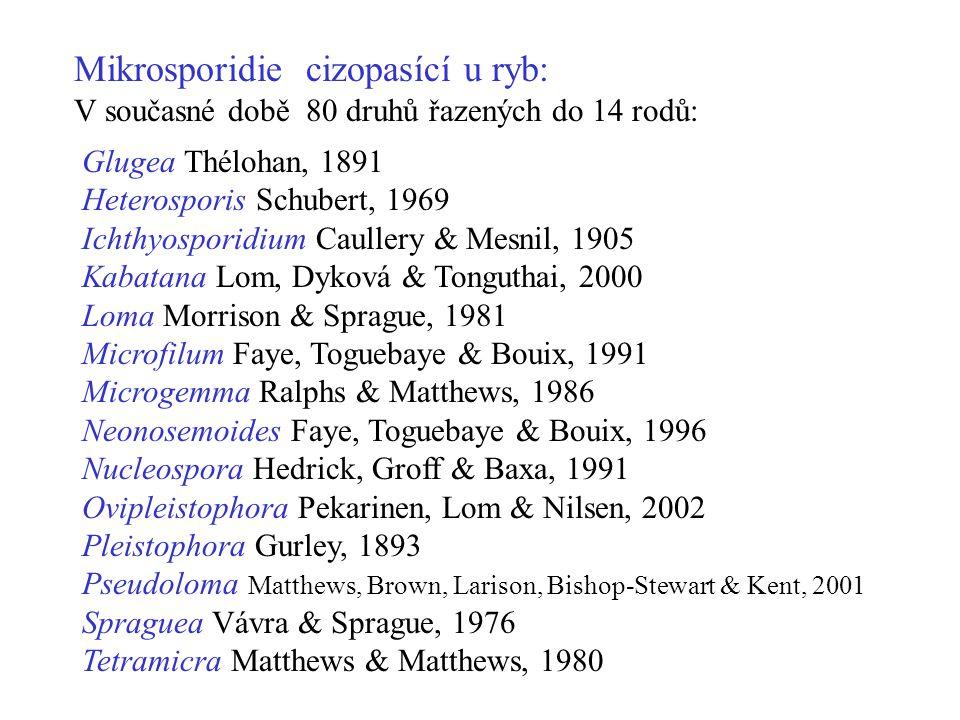 Mikrosporidie cizopasící u ryb:
